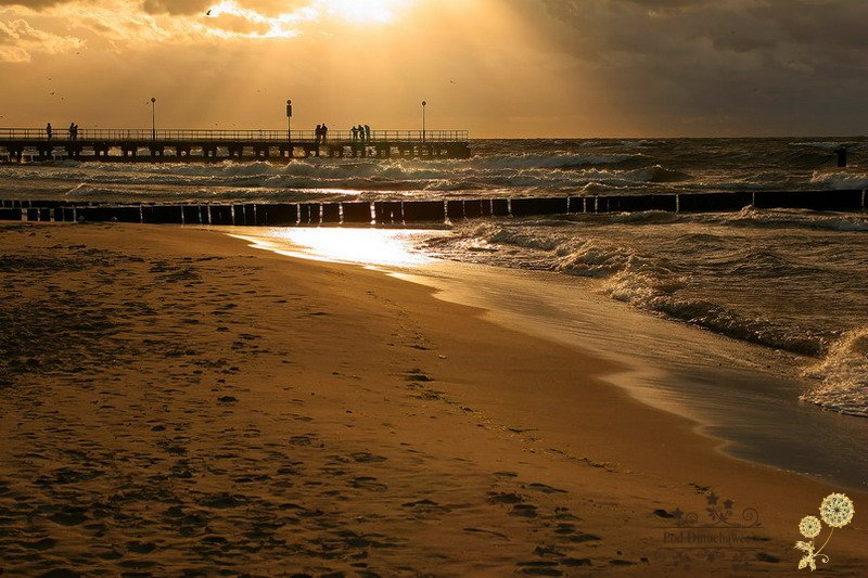 Ustronie Morskie Noclegi blisko Plaży | Widok na molo